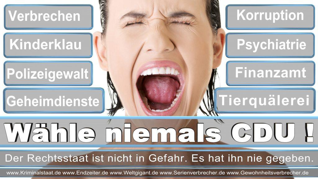 Landtagswahl Saarland 2017 CDU SPD FDP AFD Grüne Linke Piraten NPD freie Wähler